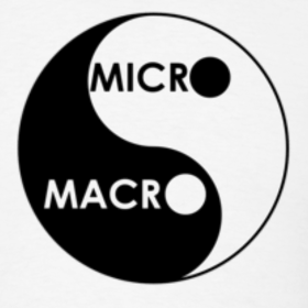 WHY DO WE NEED TO BALANCE MACRO-LEARNING AND MICRO-LEARNING ???