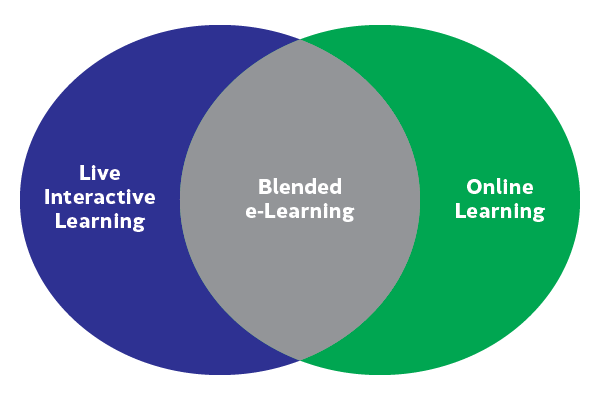 IBI – THE BLENDED E-LEARNING THAT WORKS